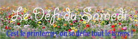 banniere_samedi_defi_printemps