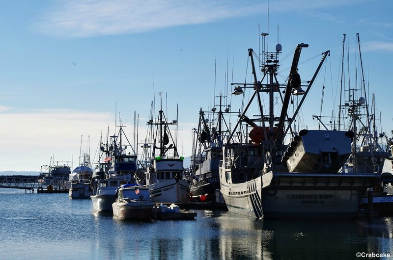 Bellingham Port