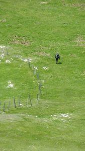 1346- Col La Croix - Sommet Feuillette - Vercors Jarjatte - 27052013 (44)