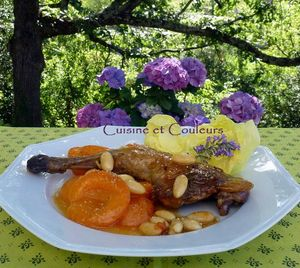 pintade aux abricots (2)