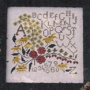scedcountryflower