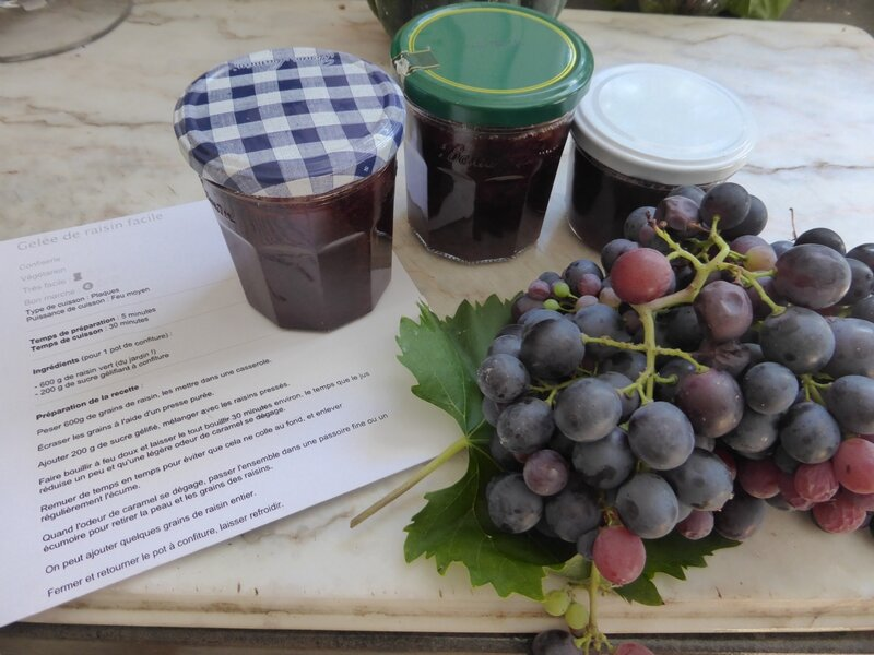 2-confiture de raisin (6)