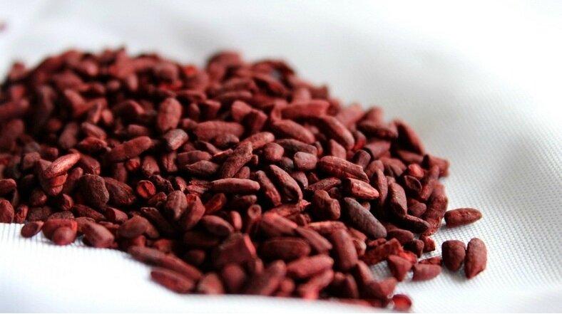 La Levure de riz rouge aide les patients intolérants aux statines !