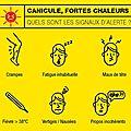 Canicule : les conseils des sapeurs-pompiers