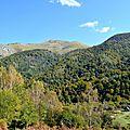 Le Layens (1625 mètres) et le bois Serròt de Boish...