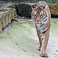 Amneville zoo 3