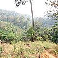 Trekking - Chiang Mai 6