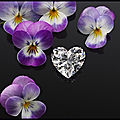 chopard jardin de kalahari diamant coeur