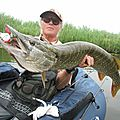 Brochet polders hollande - journée float-tube