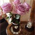 ♥ des roses pour une douce journée ♥