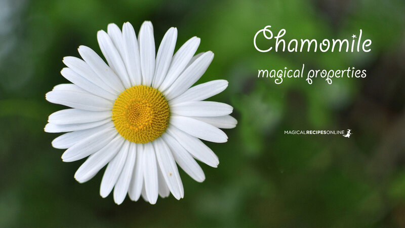 health and wellbeing chamomile