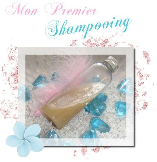 shampoing fait maison bio a base de tensio actifs
