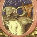 Prière pour les animaux morts - Manuscrit du XIVè siècle