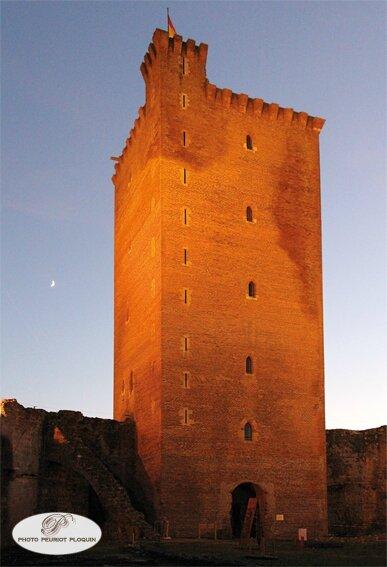 MONTANER_chateau_de_Gaston_Febus