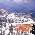 Bryce Canyon, l'étendue de la forêt