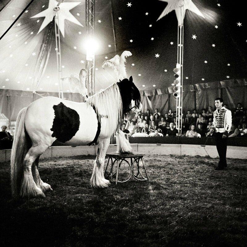 cirque-024