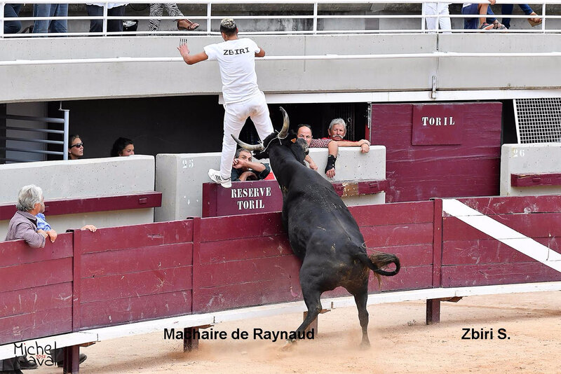 ISTRES 36