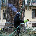 IMG_6790a