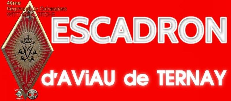 - PANNEAU d' ESCADRON CAPiTAiNE d'AViAU de TERNAY