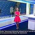 celinepitelet01.2015_04_10_premiereeditionBFMTV