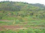 colline_rwandaise