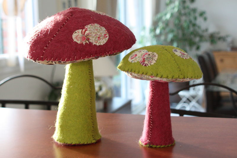 les champignons anis ....