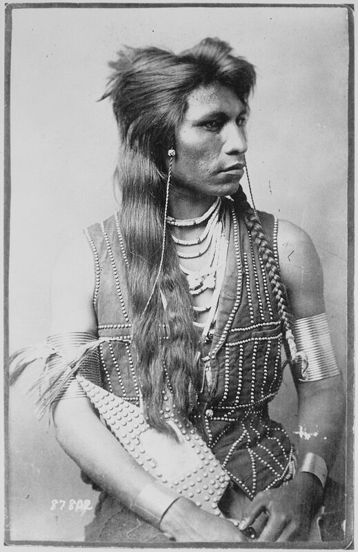 Rabbit tail (queue de lapin) Indien Shoshone