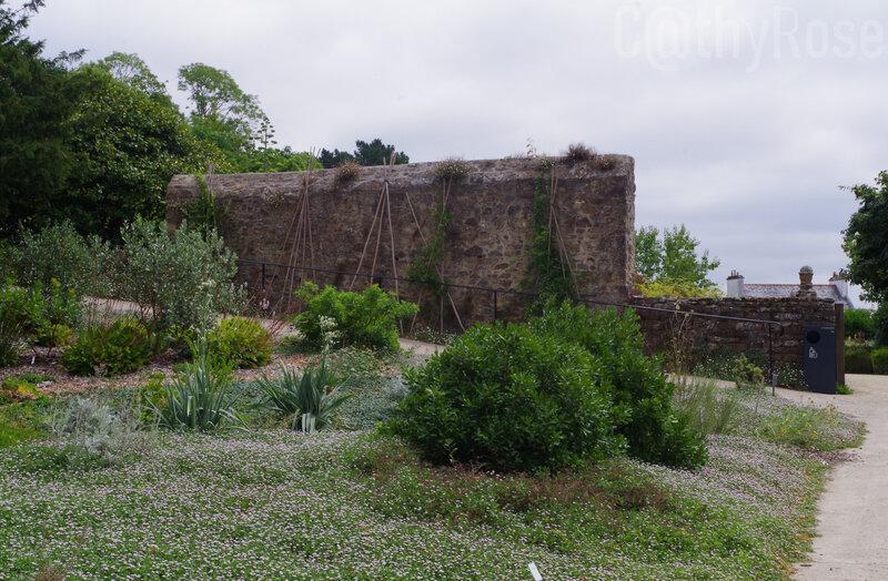 && jardin (1)