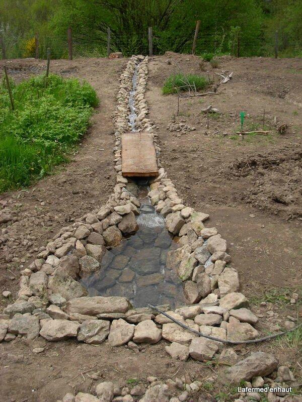 un petit bassin dans le jardin le blog de mansama. Black Bedroom Furniture Sets. Home Design Ideas