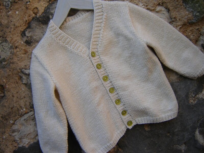 Gilet papy (3)