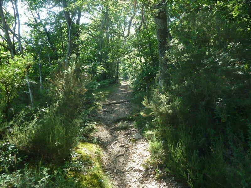 Chemin de la Moulinquié