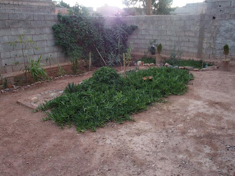 photo 17 le jardin