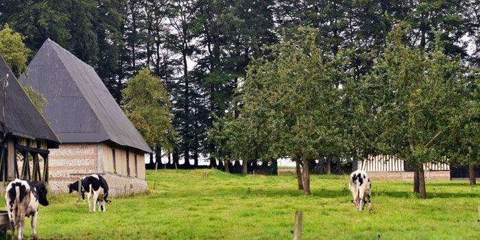 demarche-dinscription-des-clos-masures-de-la-seine-maritime-sur-la-liste-du-patrimoine-mondial-de-lunesco