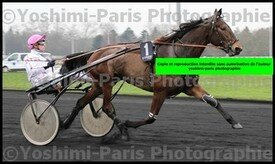 Attentionnaly,Prix de Cornulier 2016,copie bog,©Yoshimi-Paris Photographie,I7D_7690