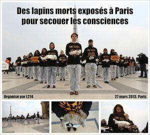 20130327-lapins-morts-paris