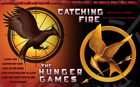 catching_fire_8308342_1280_800