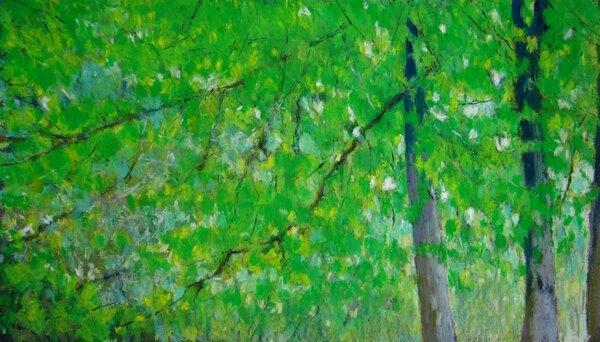 arbres de mai 2013