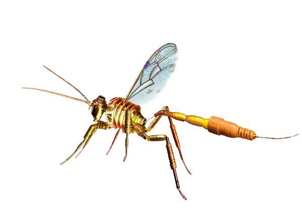 insecte electronique