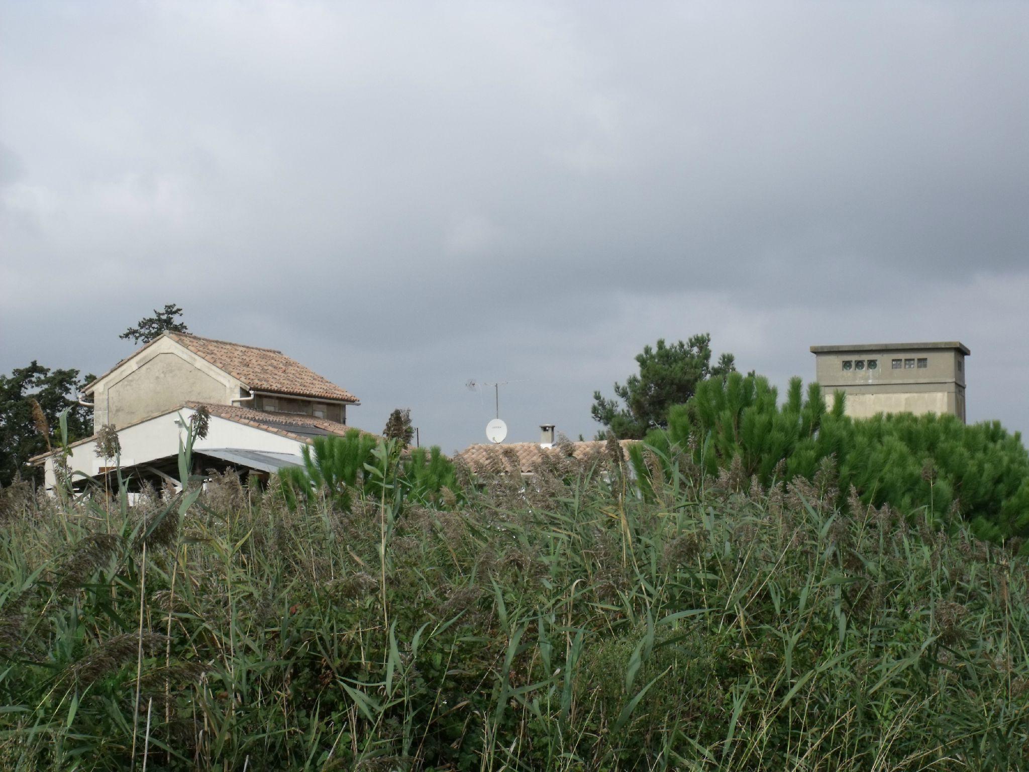 Albaron (Bouches-du-Rhône - 13)