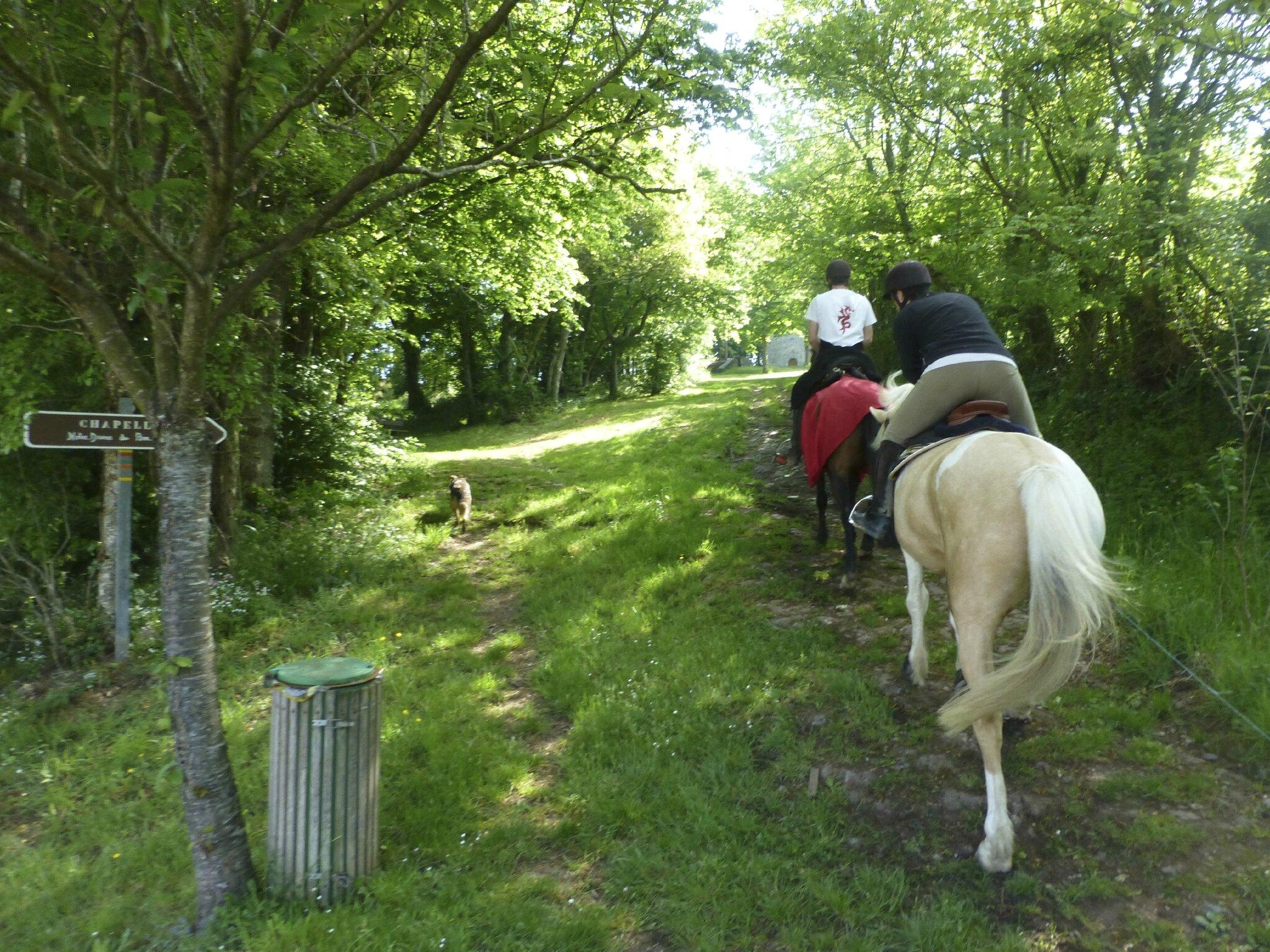 balade à cheval médiévale - Abbaye de Hambye (58)