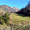 Un jour en forêts d'Aspe Barétous, le 7 janvier 2013...