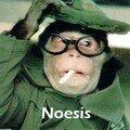 Noésis Crew [équipe de Noésis pour ceux qui ne comprennent pas]