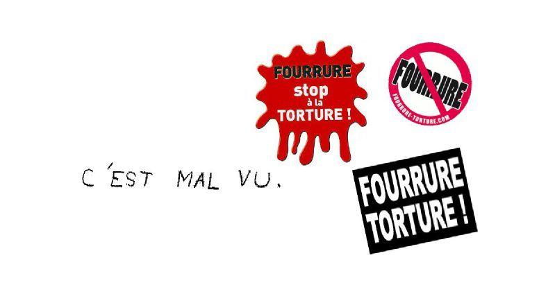 Fourrure4