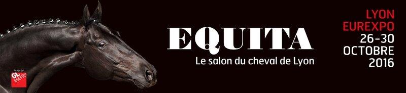 Bannière Equita'Lyon 2016