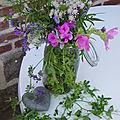jardin et fleurs des champs