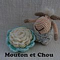 mouton et chou