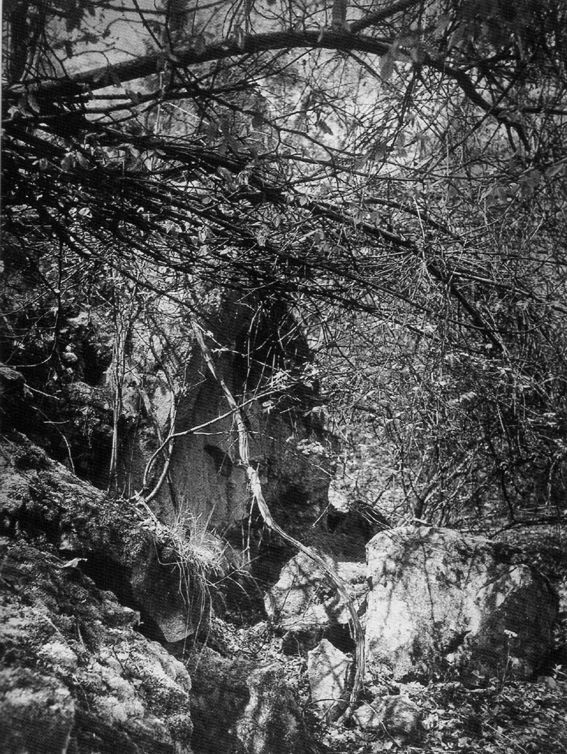 11. Auguste SANDER, Le Wolkenburg, 1937.