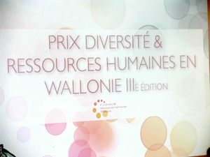 Prix_diversit__3_edition_10_mars_2010_095bis