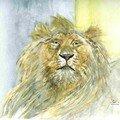 Le vieux Lion