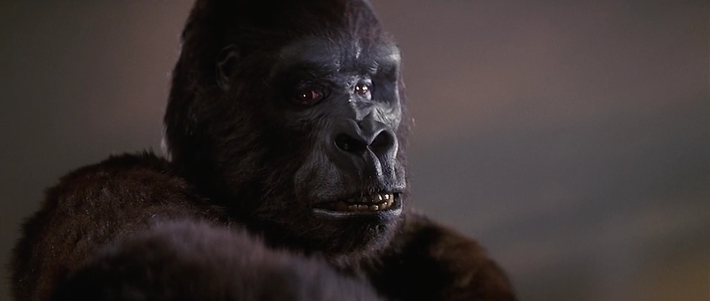 king_kong_1976_720p_bdrip_x264_sc4_r_mkv_snapshot